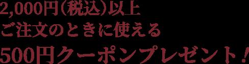 2,000(税込)以上ご注文のときに使える500円クーポンプレゼント!
